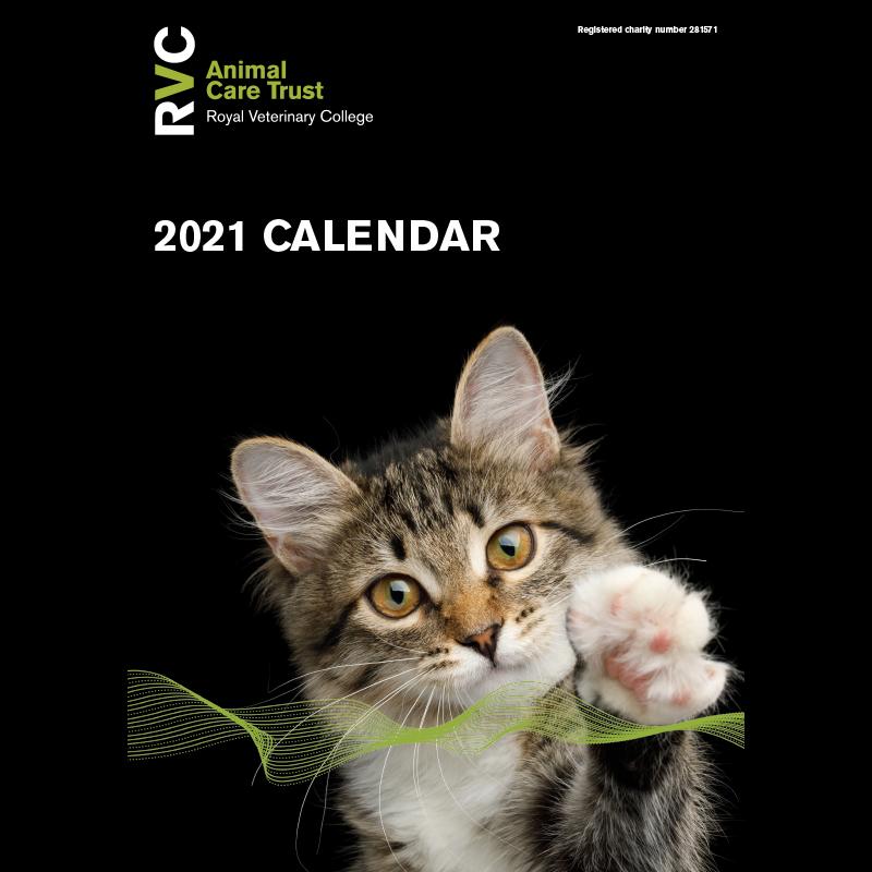 The ACT Calendar