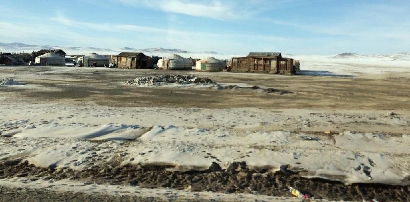 Rvc Professor Joins Mongolian Crisis Mission - News - Livestock