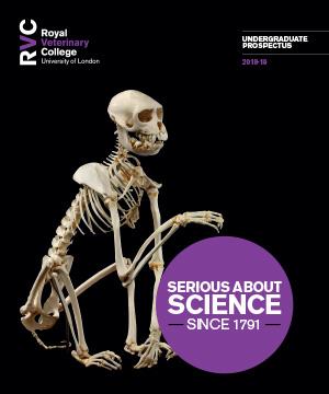 front cover of the Undergraduate Prospectus 2018-2019